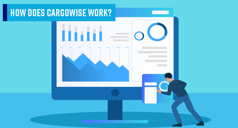 3Discover-Cargowise-Work